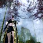 Salvia Nachtwächter