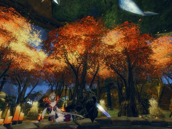 Picknick im verlassenen Wald.