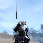 Ouch I cut my Paw! - Charr Warrioress
