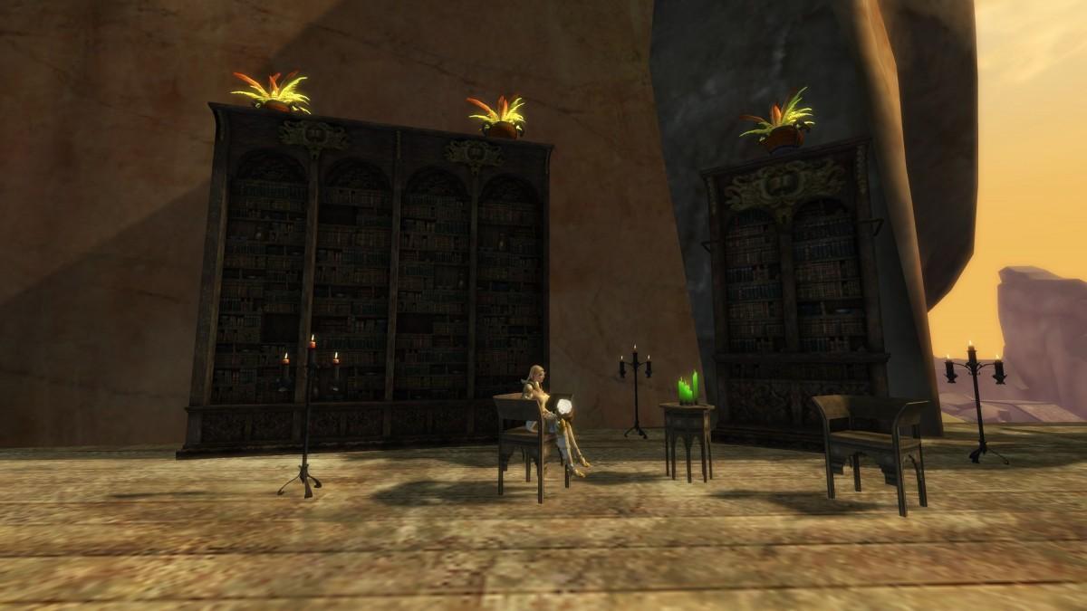 Sinova Helis gönnt sich in der neuen Bibliothek einen großen Schluck Bier und genießt den Sonnenuntergang.